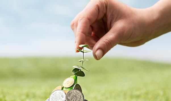 formación caja rural sostenibilidad