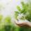 Nuevo fondo de Gescooperativo: Rural Futuro Sostenible FI